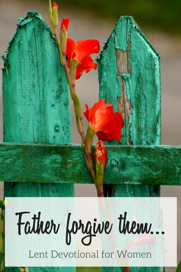 Blue-Green fence with a coral flower representing pain and forgiveness in this Lent Devotional for Women.