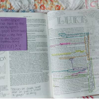 Catholic Journaling Bible: Luke 1