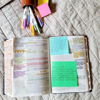 Catholic Journaling Bible Review: NRSV Catholic Bible Journal Edition
